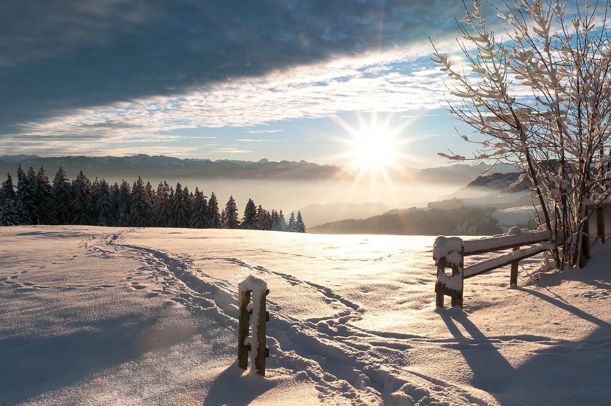 Reinkarnationstherapie bei seelen-reise.ch winter 2016