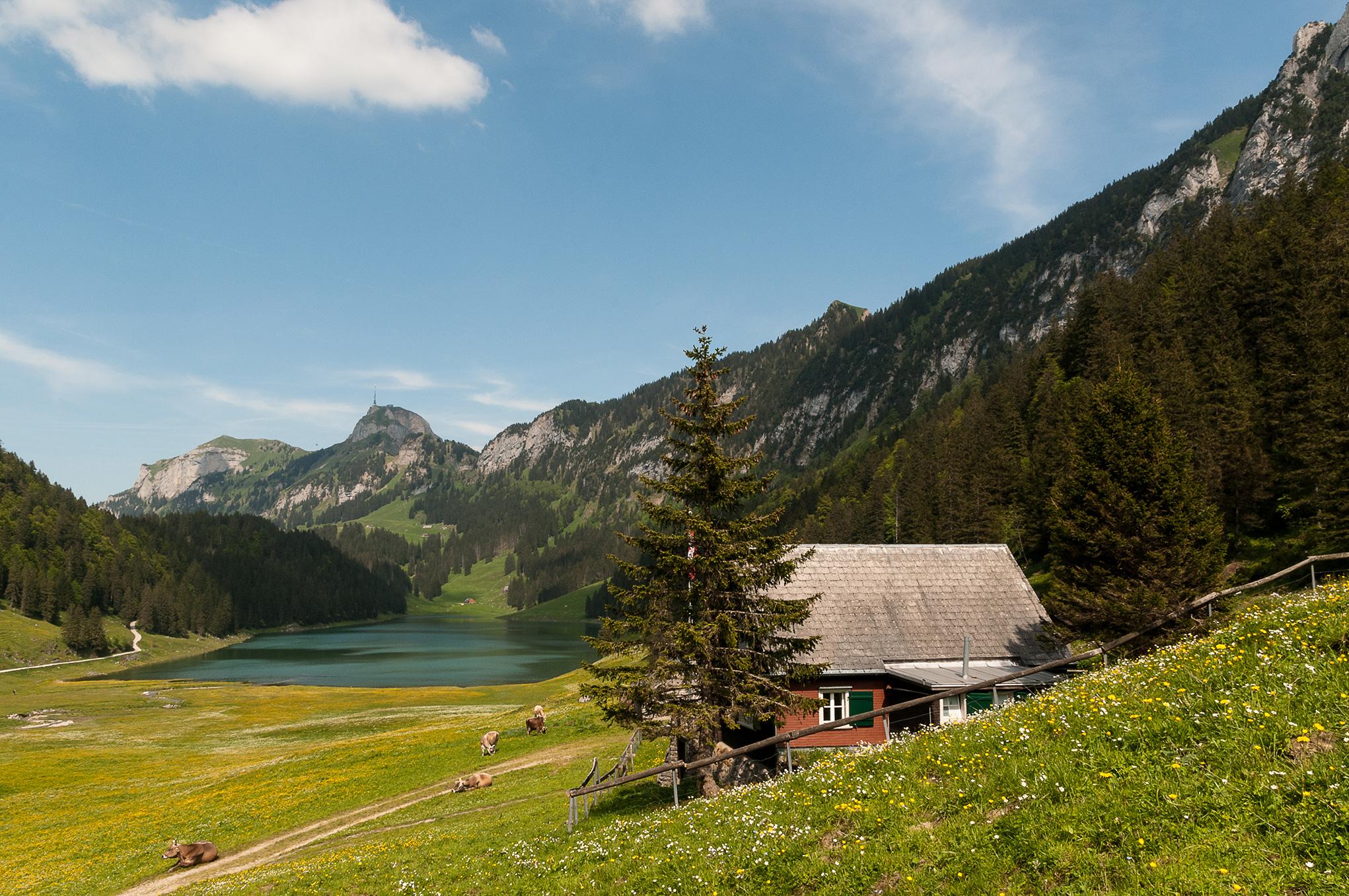 Seelen-Reise.ch Reinkarnationstherapie